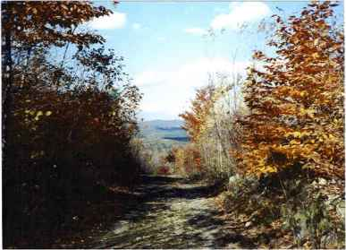 A view from the road on Sawyer Mountain