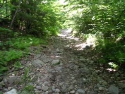 The trail rapidly turns to a rocky path.