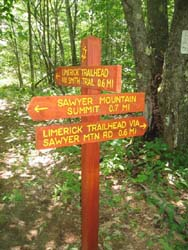 Trail Junction Sign