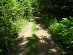 Start of Sawyer Mountain Trail