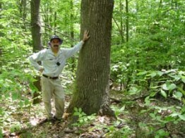 Don Cameron with old-growth red oak