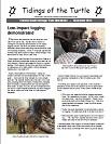 December 2013 Newsletter Cover